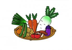野菜、果実を沢山食べる!健康長寿の秘訣です!