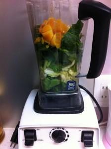 健康長寿 生搾り野菜ジュース Vita-mix