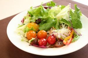 野菜中心の食生活で腸内環境を整えましょう!