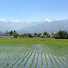将来素敵な田舎に住もう! / 湧水、自然の宝庫「長野県安曇野市」