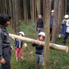 日本の森を蘇らせよう! 「きらめ樹式 天然乾燥間伐法」